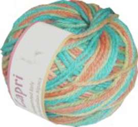 Hand dyed yarn from Spin'n Knit